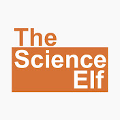 The Science Elf net worth