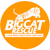 Big Cat Rescue net worth