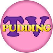 Pudding-TV net worth