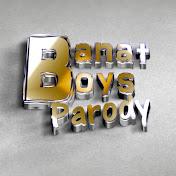 Banat Boys Parody net worth
