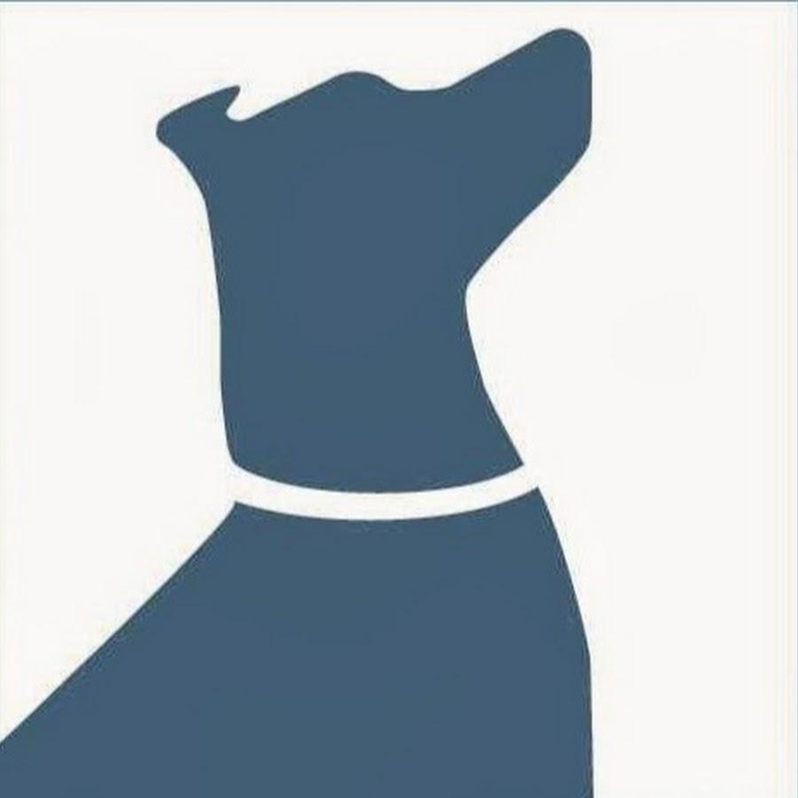 Instinct Dog Behavior &
