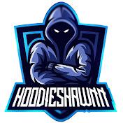 HoodieShawnn net worth
