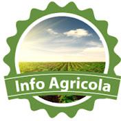 InfoAgricola GT net worth