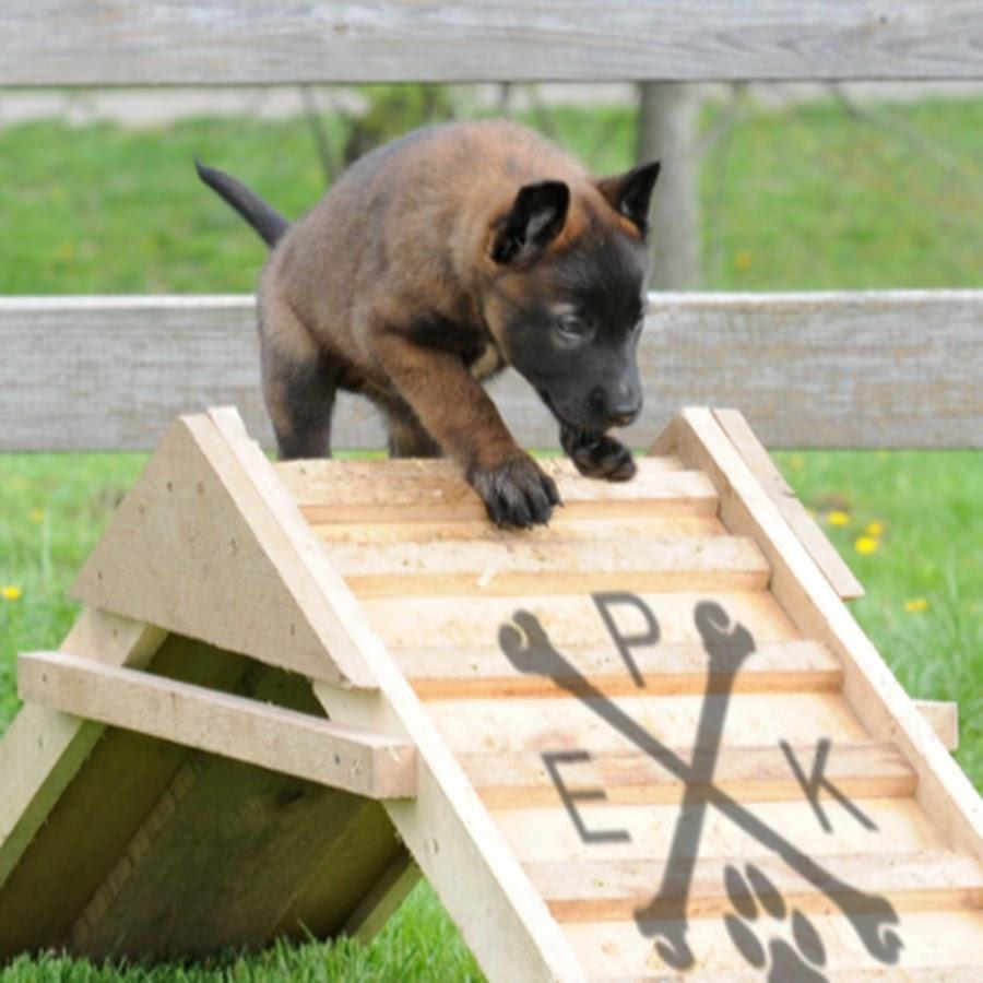 EPK Dogs
