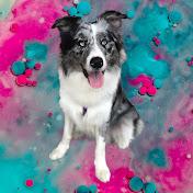 ApacksJourney