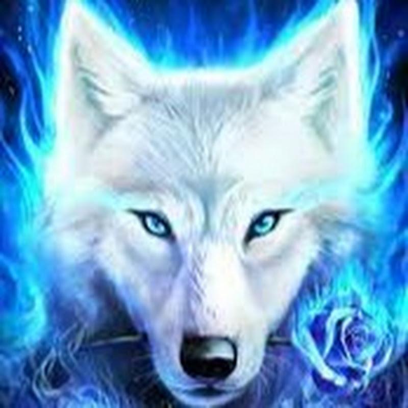 MysticalFrost puppy (mysticalfrost-puppy)