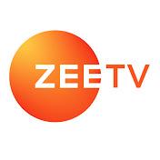 Zee TV net worth