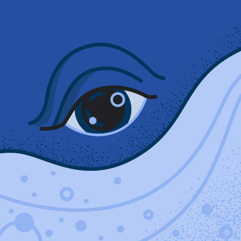 Quadrucc (quadrucc)