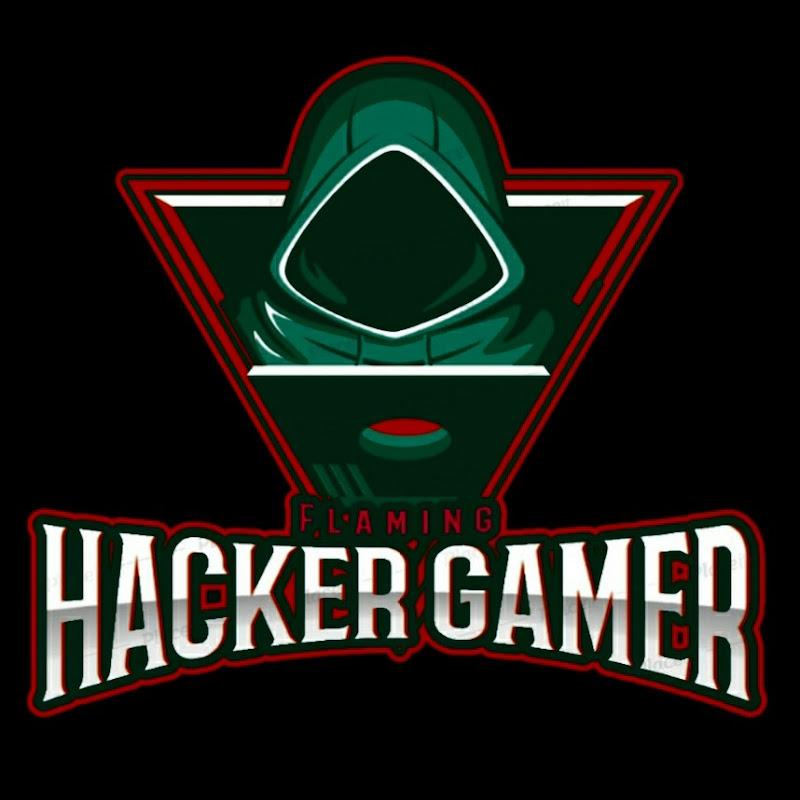 Flaming HACKER GAMER (flaming-hacker-gamer)