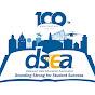 DSEA Literacy Channel - Youtube
