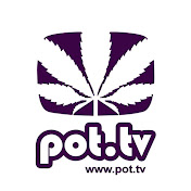 Pot TV net worth