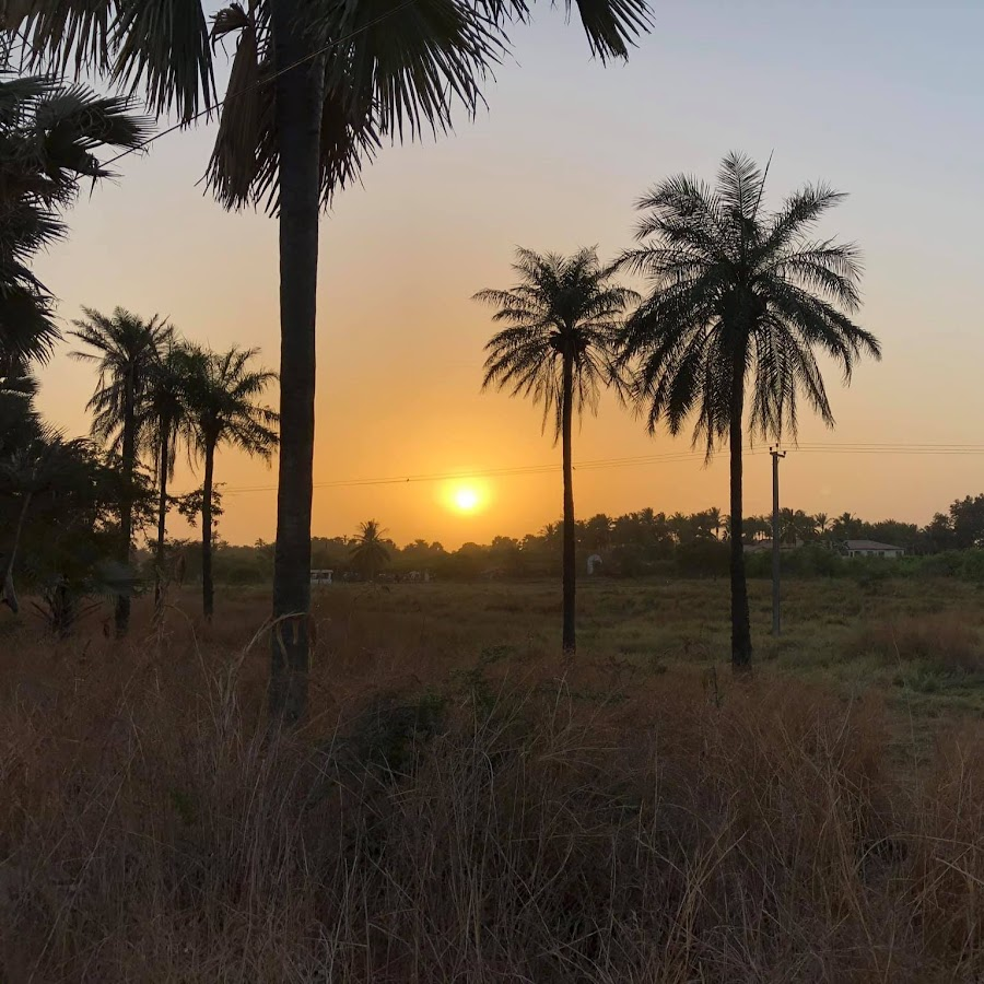 The Gambia Tourism