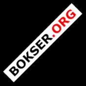 bokserorg Income