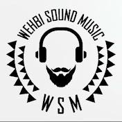 WSM WEHBI SOUND MUSIC net worth