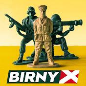 BirnyX net worth