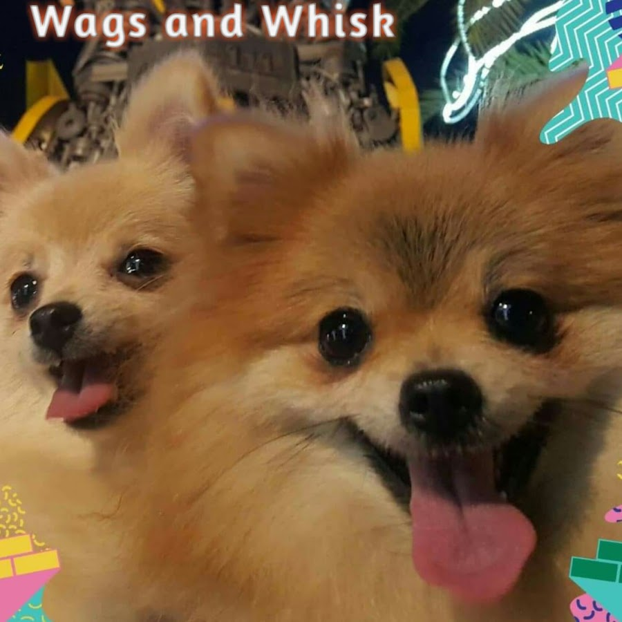 Wags and Whisk