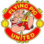 Flying Pig United net worth