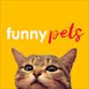 Life Funny Pets