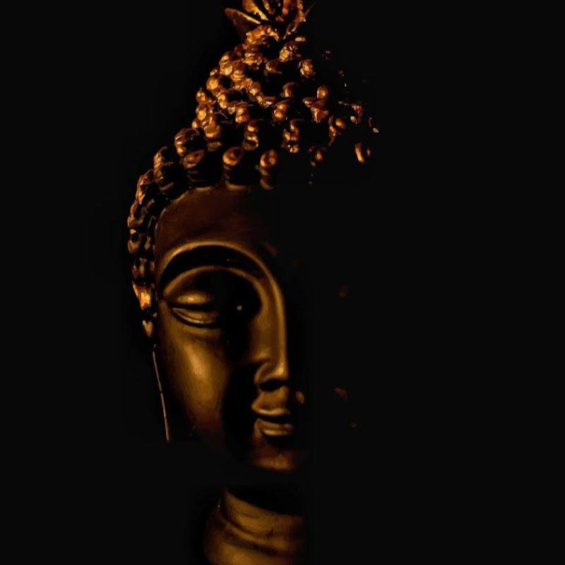peace monk (peace-monk)