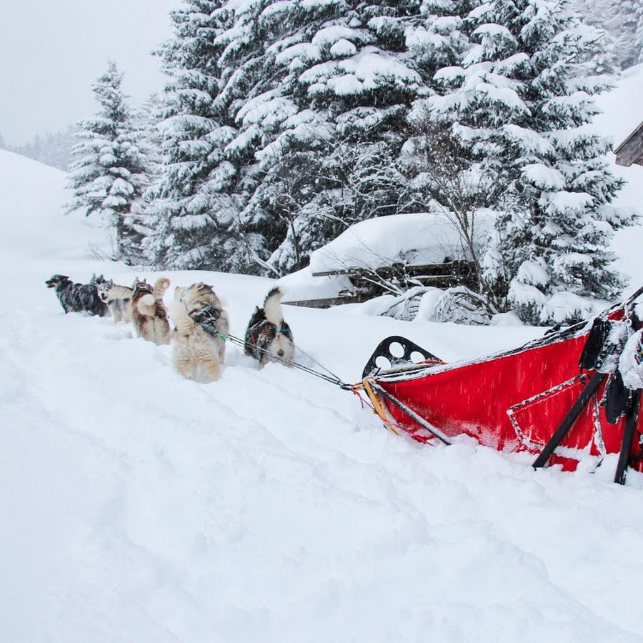 Husky Power Tirol *