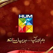HUM TV Dramas net worth