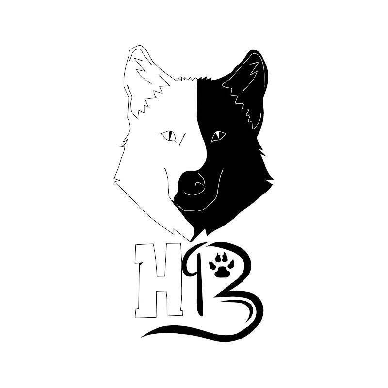 Logo for Hybrid