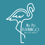 My Pet Flamingo Avatar