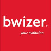 Bwizer net worth