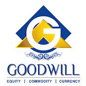 Goodwill Commodities net worth