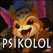 PsikoLoL net worth