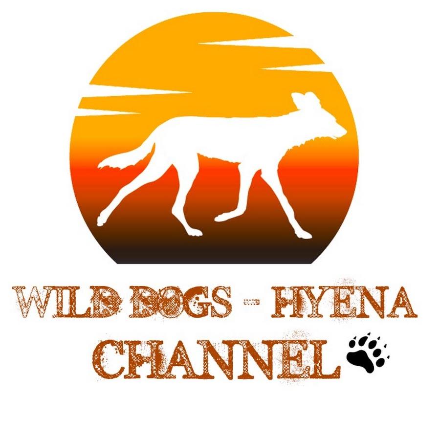 Wild Dogs - Hyena