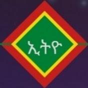 Ethio ኢትዮ Music AG net worth