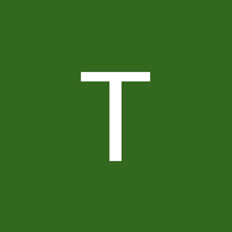 TheIronsamurai