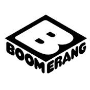 Boomerang Polska net worth