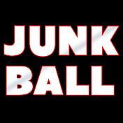 Junkball net worth