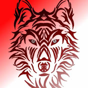 Wolfian net worth