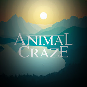 Animal Craze