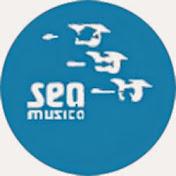 OfficialSeamusica net worth