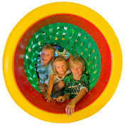 Family Playlab net worth