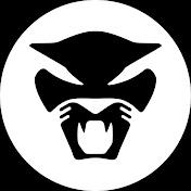 Thundercat Avatar