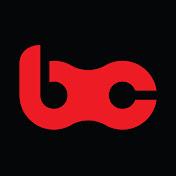 BCpov net worth