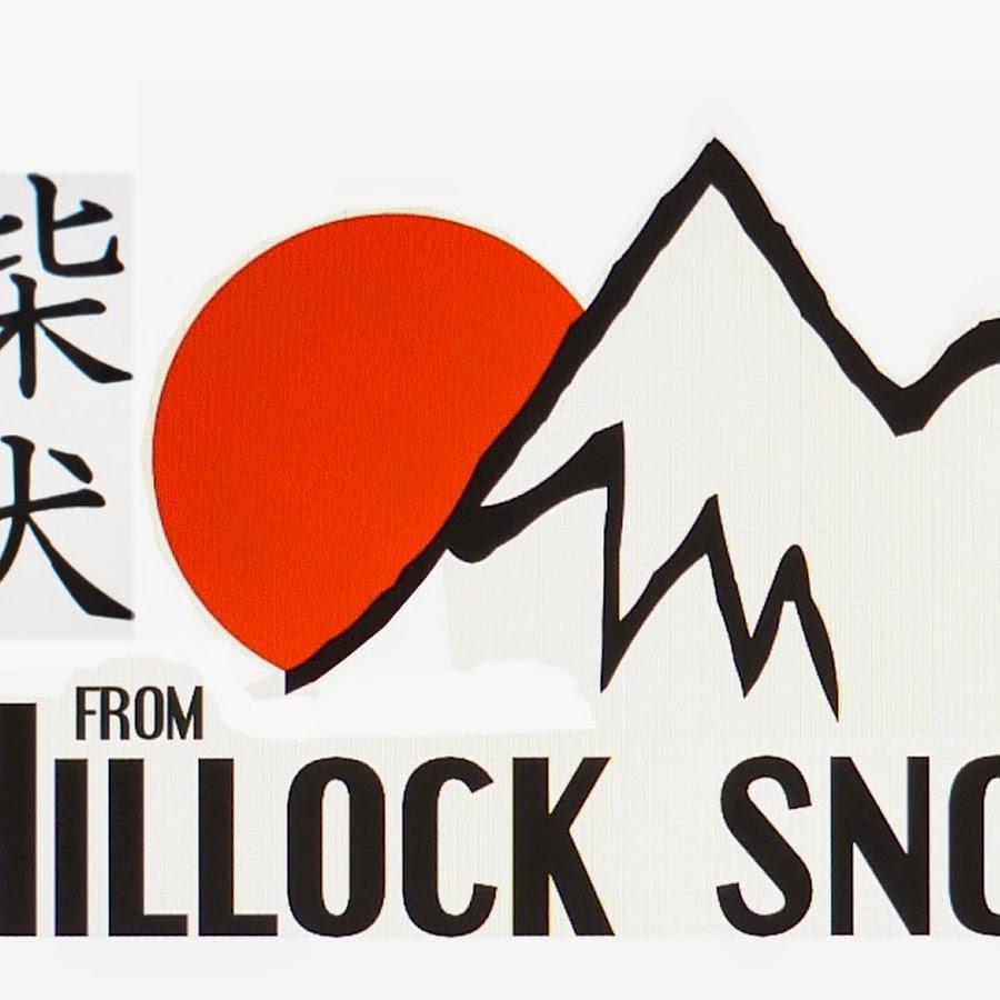 Shiba Inu From Hillock