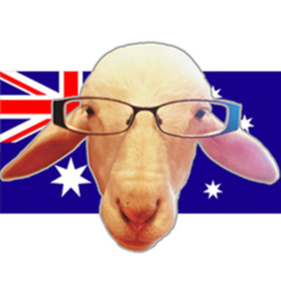 Joy the Sheep & Family