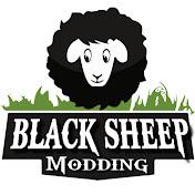 Blacksheep Modding net worth