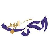 Arabs Today TV Channel net worth