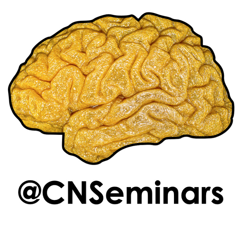 Clinical Neuroanatomy Seminars
