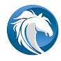 RY Farms Paso Fino Horses
