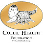 Collie Health Foundation - Youtube