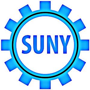 Mr SunY