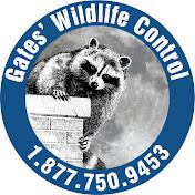 Gates Wildlife Control net worth